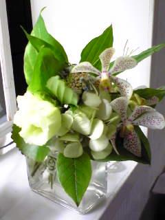 RINの花